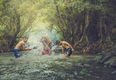 Swim in the stream Royalty Free Stock Photography