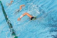 Swim Team Practice. Several swimmers in a swim lane practicing laps royalty free stock image