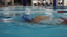 Swim Training Indoor Pool. Young man with other swimmers training in the pool. Slow motion steadicam shot stock footage