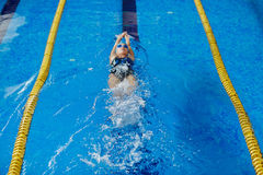Swim training. Young active female training in swimming pool Royalty Free Stock Images