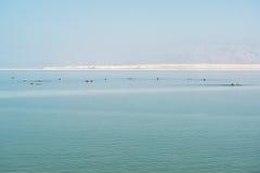 Swimers in dode overzees, Ein Bokek, Israël Royalty-vrije Stock Afbeeldingen