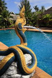Swiming pool, Plants in the hotel area, palma, Phra Ae Beach, Ko Lanta, Thailand. A Picture of the swiming pool, trees in the hotel area,  Phra Ae Beach, Ko Royalty Free Stock Photo