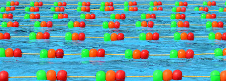Swiming pool. A professional Swimming pool with colourful ball line Royalty Free Stock Photography