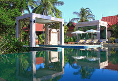 Swiming Pool in Tropical Garden Stock Photo