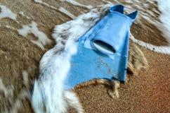 Swimm d'aileron mordu et vagues sur le sable de mer illustration stock