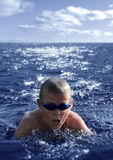 The swimmer Stock Photography