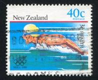swimmer fotografie stock