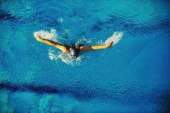 Swimmer Stock Photography