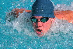 Swimmer. Fierce swimmer in competition at a swim meet stock photo