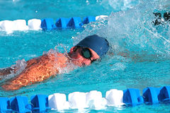Swimmer. Fierce swimmer in competition at a swim meet stock image