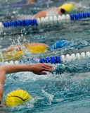 Swimmer. In swimming contest, snapshot from the side Stock Photos