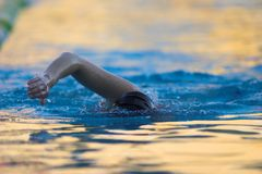 Swimmer. Training in the pool Stock Photo