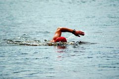 Free Swimmer Royalty Free Stock Photos - 2070128