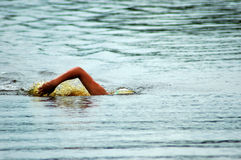 Swimmer. A white arm of a caucasian swimmer athlete swimming in the lake Stock Photos