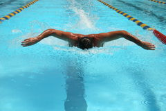 Swimmer. In lap Royalty Free Stock Photo