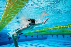 Swimmer. Under Water in Pool Royalty Free Stock Images