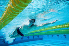 Swimmer. Under Water in Pool Stock Image