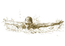 Swimmer. Butterfly swimimng style - hand drawing picture converted into vector Royalty Free Stock Images
