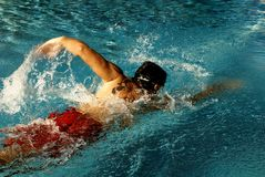 Swimmer royalty free stock images
