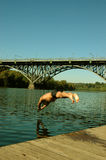 Swimmer. Man diving into the river stock photo