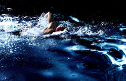 The Swimmer Royalty Free Stock Photo