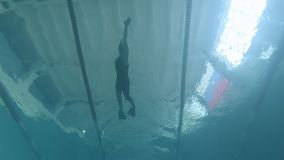 Swimmer athlete dives into the water. underwater video shooting in the pool. Finswimming stock video footage