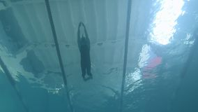 Swimmer athlete dives into the water. underwater video shooting in the pool. Finswimming stock video