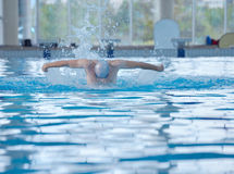 Swimmer athlete Royalty Free Stock Photography