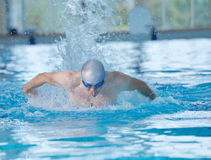 Swimmer athlete Stock Photography