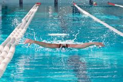 Swimmer athlete in the pool Stock Photography