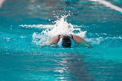 Swimmer athlete in the pool Royalty Free Stock Photo