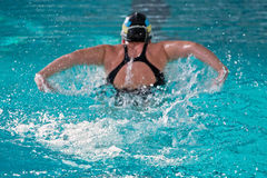 Swimmer athlete in the pool Stock Photo