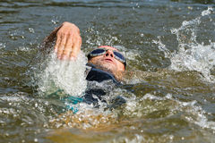Swimmer in backstroke swimming. Swimmer is swimming in backstroke in a lake Stock Images