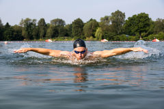 Swimmer butterfly or dolphin swimming stroke Royalty Free Stock Photography