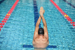 Swimmer in cap raising hands - back view Stock Photography