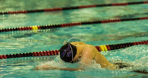 Swimmer competes in freestyle. Athlete surging forward at swim meet Stock Photos