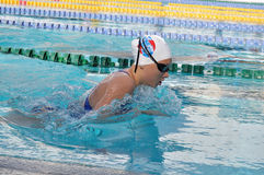 Swimmer in competition. Swimmer in a competion in pool Royalty Free Stock Image