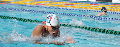 Swimmer in competition. Swimmer in a competion in pool Royalty Free Stock Photos