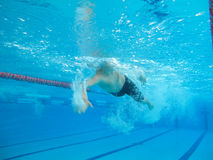 Swimmer in comptition Royalty Free Stock Images