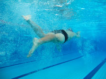 Swimmer in comptition Stock Images