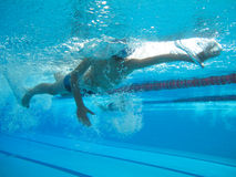 Swimmer in comptition Royalty Free Stock Photo