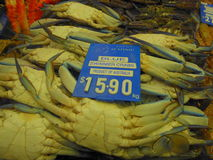 Swimmer crabs for sale on market stall Stock Photography