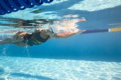 Swimmer in crawl style underwater Royalty Free Stock Photography