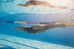 Swimmer in crawl style underwater Royalty Free Stock Photo