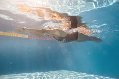 Swimmer in crawl style underwater Stock Image