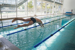Swimmer diving into the pool at leisure center royalty free stock photo