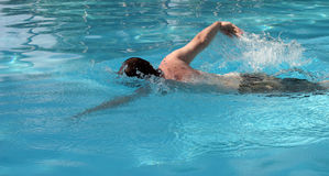 Swimmer does freestyle Royalty Free Stock Photo