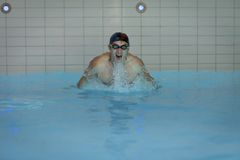 Swimmer Doing Butterfly Stroke Stock Photos