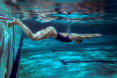 Swimmer Stock Image