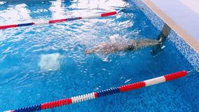 Swimmer finishing swimming race in a swimming pool. Top view. 4K stock video footage